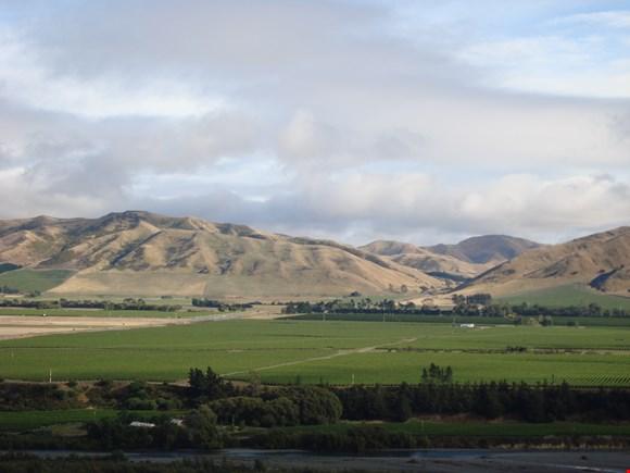 Wellington to Host 2012 Air New Zealand Wine Awards